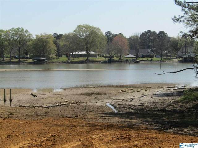Lakeview Street, Ashville, AL 35953 (MLS #1776073) :: Southern Shade Realty