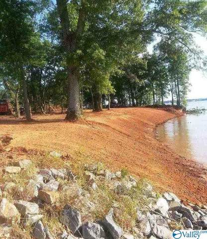Tract 3 County Road 546, Centre, AL 35960 (MLS #1777984) :: The Pugh Group RE/MAX Alliance