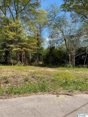 131 Eight Point Lane, Guntersville, AL 35976 (MLS #1778240) :: Green Real Estate