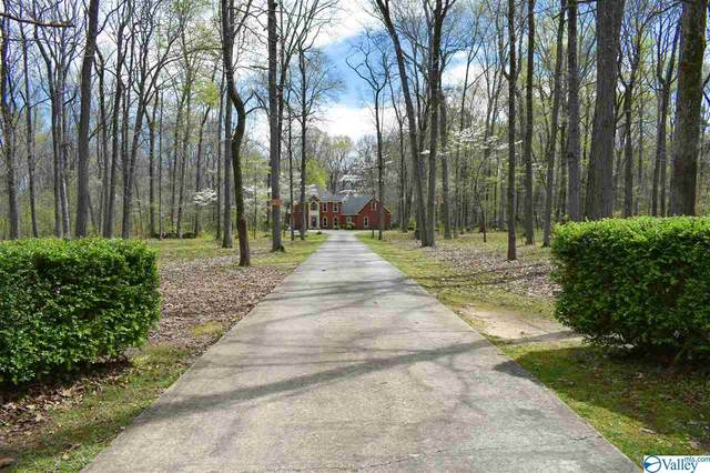 1397 Bethel Road, Decatur, AL 35603 (MLS #1778350) :: Coldwell Banker of the Valley