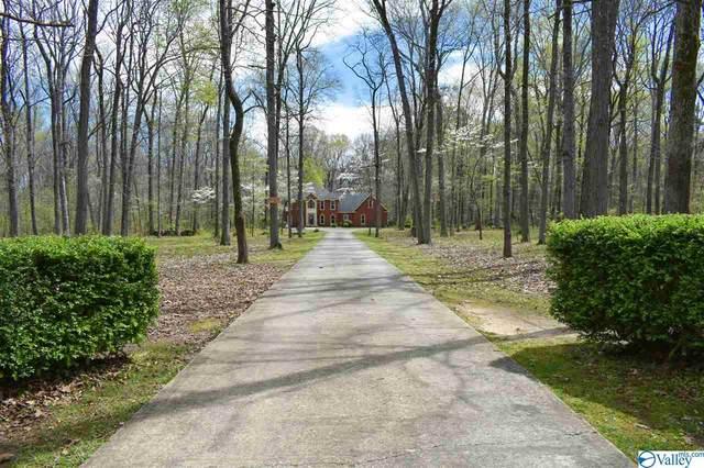 1397 Bethel Road, Decatur, AL 35603 (MLS #1778350) :: MarMac Real Estate
