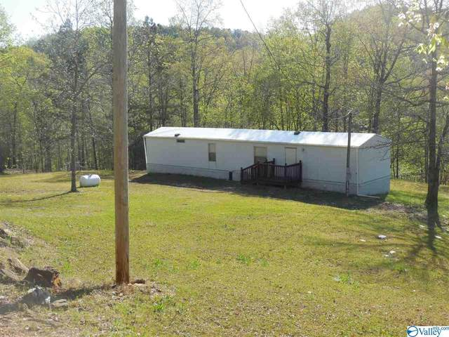 1052 County Road 3782, Arley, AL 35541 (MLS #1778762) :: RE/MAX Unlimited