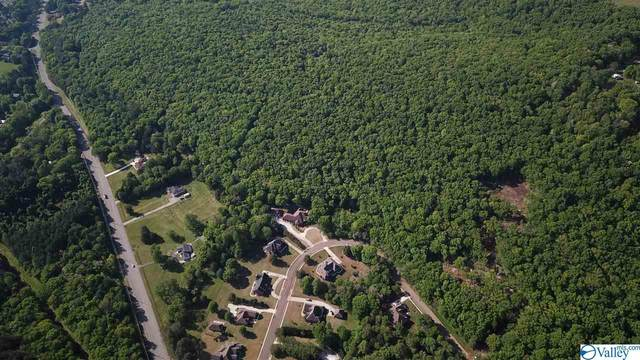 0 Pulaski Pike, Huntsville, AL 35810 (MLS #1779577) :: MarMac Real Estate