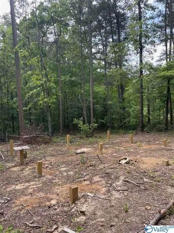 County Road 861, Gaylesville, AL 35973 (MLS #1780088) :: Green Real Estate