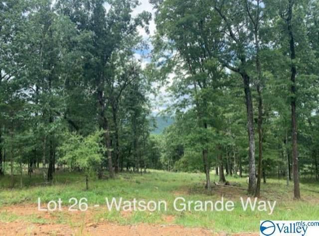 51 Watson Grande Way, Owens Cross Roads, AL 35763 (MLS #1781460) :: The Pugh Group RE/MAX Alliance