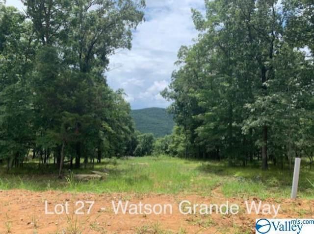 53 Watson Grande Way, Owens Cross Roads, AL 35763 (MLS #1781462) :: Coldwell Banker of the Valley