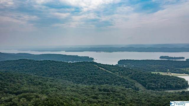 * Panorama Point, Scottsboro, AL 35976 (MLS #1782418) :: Green Real Estate