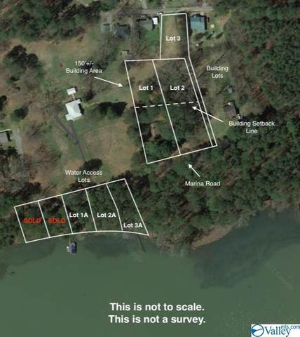 2 Marina Road, Guntersville, AL 35976 (MLS #1782575) :: Coldwell Banker of the Valley