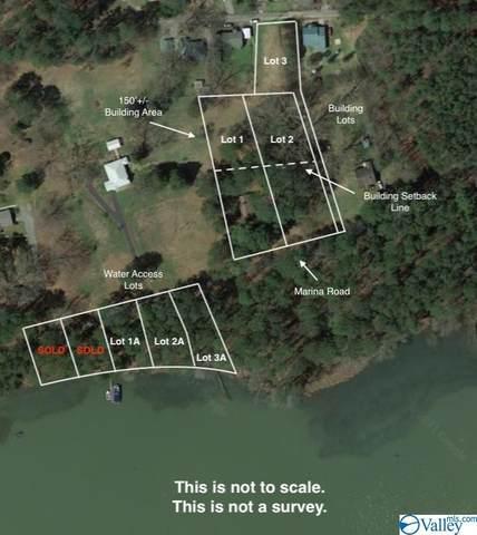 3 Marina Road, Guntersville, AL 35976 (MLS #1782576) :: Coldwell Banker of the Valley
