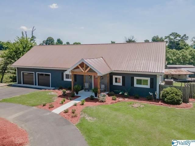 2084 Buck Island Drive, Guntersville, AL 35976 (MLS #1783838) :: MarMac Real Estate