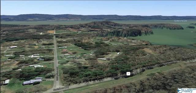 28 Holiday Shores Road, Scottsboro, AL 35769 (MLS #1784016) :: Green Real Estate
