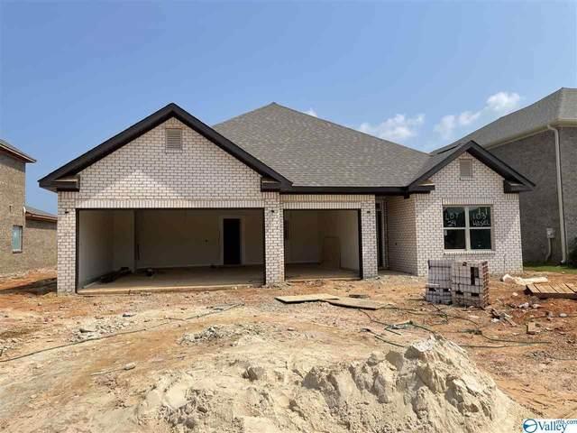 103 Hosel Circle, Meridianville, AL 35759 (MLS #1786739) :: Green Real Estate