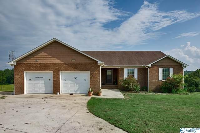 910 Copeland Creek Road, Blountsville, AL 35013 (MLS #1787062) :: Green Real Estate