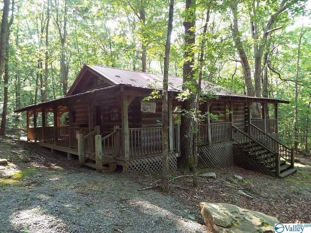 364 County Road 614, Mentone, AL 35984 (MLS #1787442) :: MarMac Real Estate