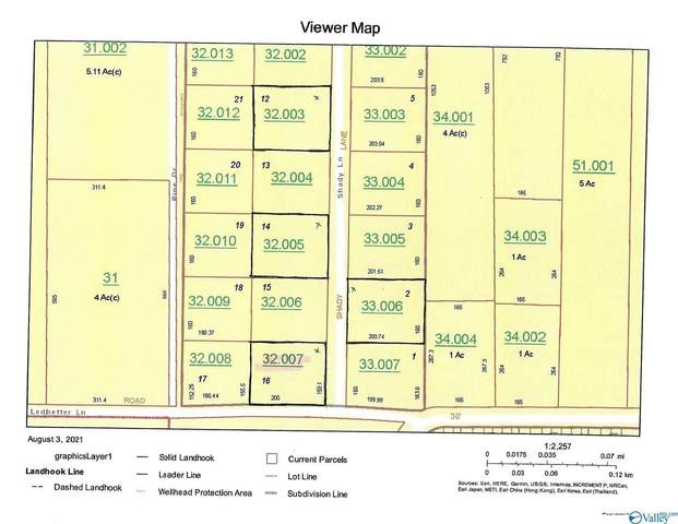 Lot 16 Shady Lane, Geraldine, AL 35974 (MLS #1787847) :: Southern Shade Realty