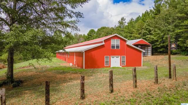 2528 Mckay Road, Delta, AL 36258 (MLS #1789097) :: Green Real Estate