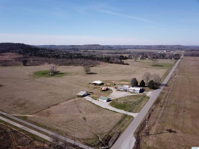 8374 County Road 222, Trinity, AL 35673 (MLS #1789374) :: MarMac Real Estate