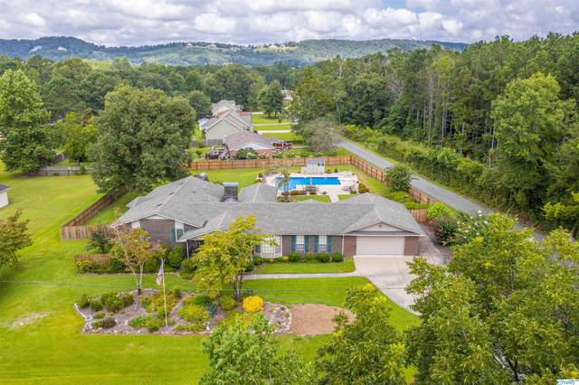 2172 Brookdale Road, Southside, AL 35907 (MLS #1789977) :: MarMac Real Estate