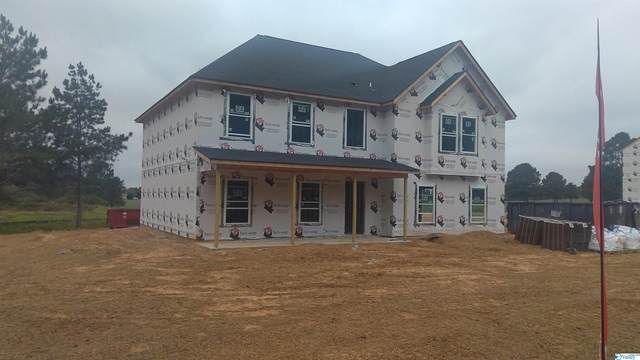 5312 Georgia Mountain Road, Guntersville, AL 35976 (MLS #1790486) :: Green Real Estate