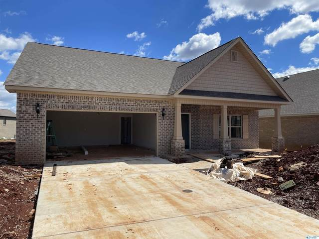 241 Portrait Street, Meridianville, AL 35759 (MLS #1790730) :: Green Real Estate
