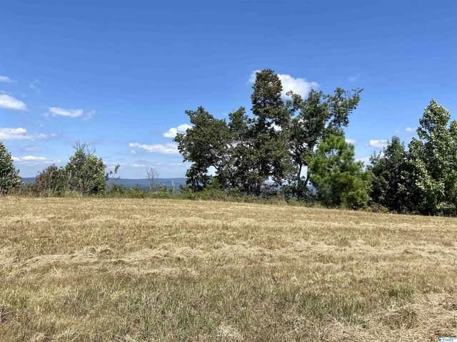 LOT 202 County Road 767, Cedar Bluff, AL 35959 (MLS #1791177) :: Green Real Estate