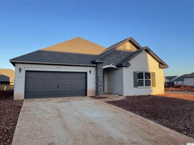 233 Portrait Street, Meridianville, AL 35759 (MLS #1791668) :: Green Real Estate