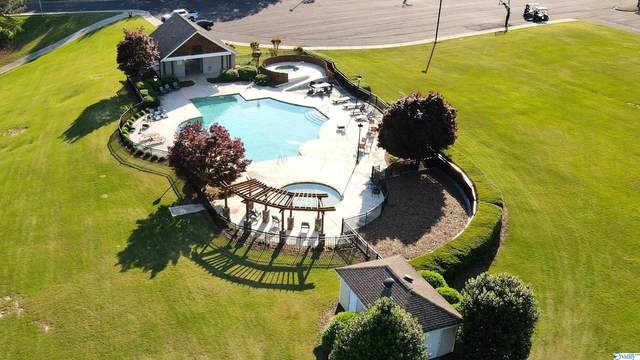 101 Eagle Ridge Drive, Guntersville, AL 35976 (MLS #1792750) :: Green Real Estate