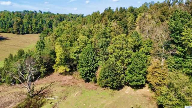 Lot 4 Goresville Road, Prospect, TN 38477 (MLS #1792798) :: Green Real Estate