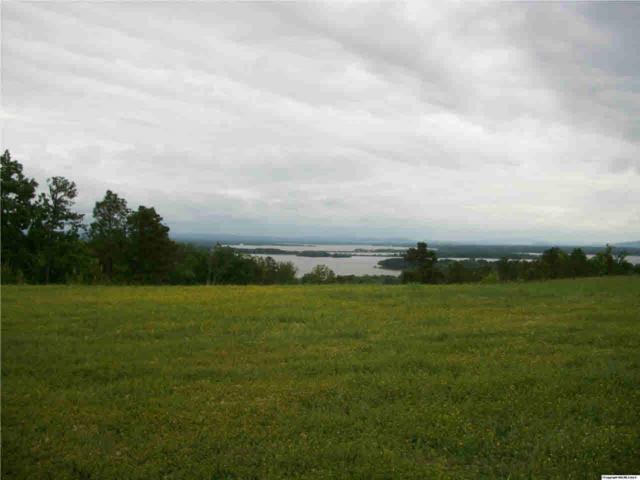 71 County Road 767, Cedar Bluff, AL 35959 (MLS #520027) :: Amanda Howard Sotheby's International Realty
