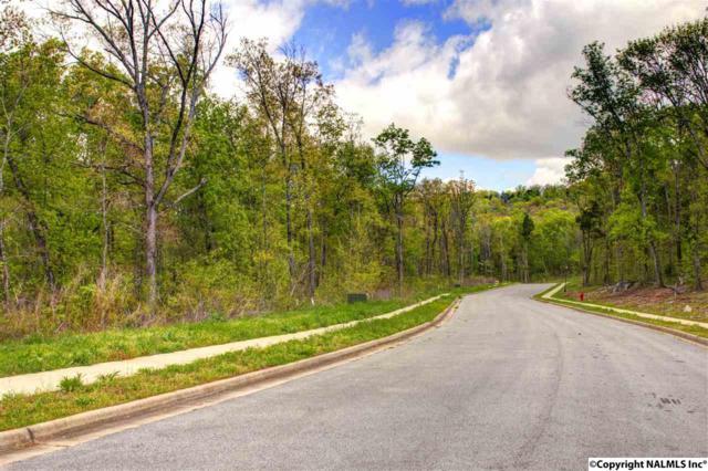 315 Kensington Drive, Madison, AL 35758 (MLS #779006) :: Amanda Howard Real Estate™