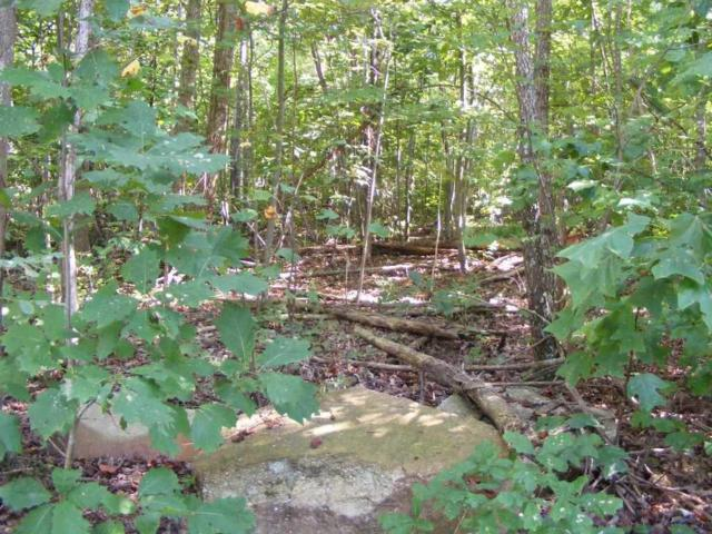 County Road 166 (Citadel Rock Road), Fort Payne, AL 35967 (MLS #1003658) :: RE/MAX Alliance
