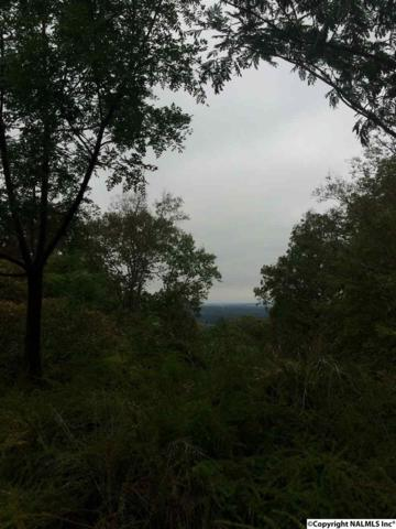 0 Apache Drive, Huntsville, AL 35810 (MLS #1028074) :: Amanda Howard Sotheby's International Realty