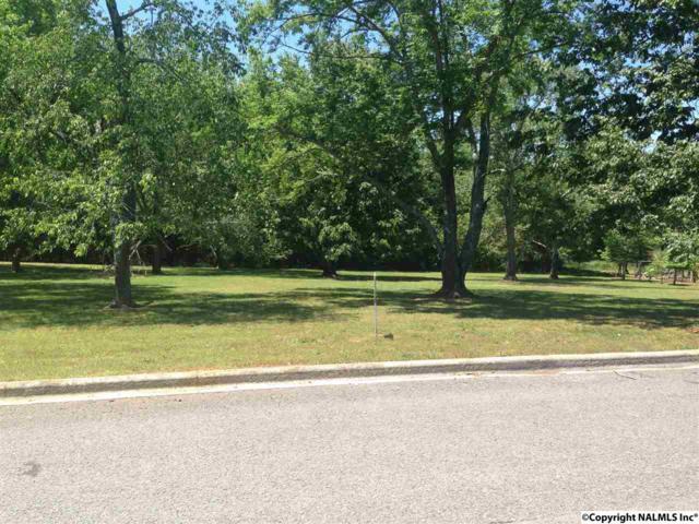 Lot 46 Wimberly  Drive, Scottsboro, AL 35768 (MLS #1037018) :: Amanda Howard Real Estate™