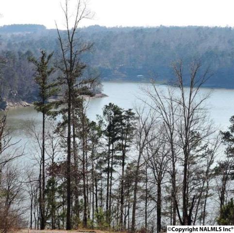 37 Rock Creek Penninsula, Arley, AL 35053 (MLS #1038287) :: Legend Realty