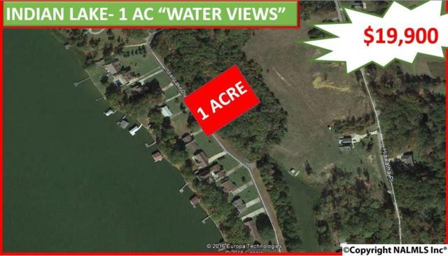 37 & 38 Indian Lake Drive, Rainbow City, AL 35906 (MLS #1042311) :: Amanda Howard Real Estate™