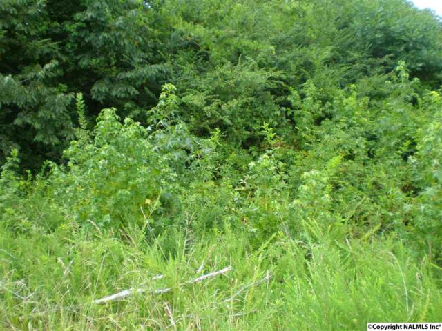 Lot 109 Drew Drive, Hollywood, AL 35752 (MLS #1050248) :: LocAL Realty