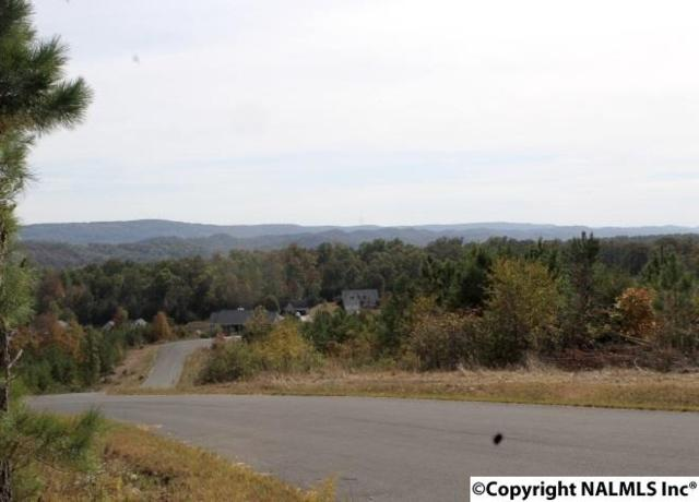 Lot 15 Hillside Drive, Fort Payne, AL 35967 (MLS #1056371) :: Amanda Howard Sotheby's International Realty