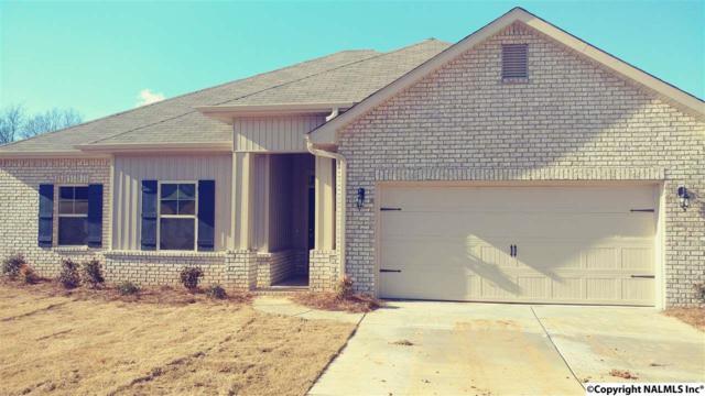 14351 Water Stream Drive, Harvest, AL 35749 (MLS #1059308) :: Amanda Howard Real Estate™