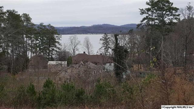 1 Camp Ney A Ti Road, Guntersville, AL 35976 (MLS #1061825) :: Coldwell Banker of the Valley