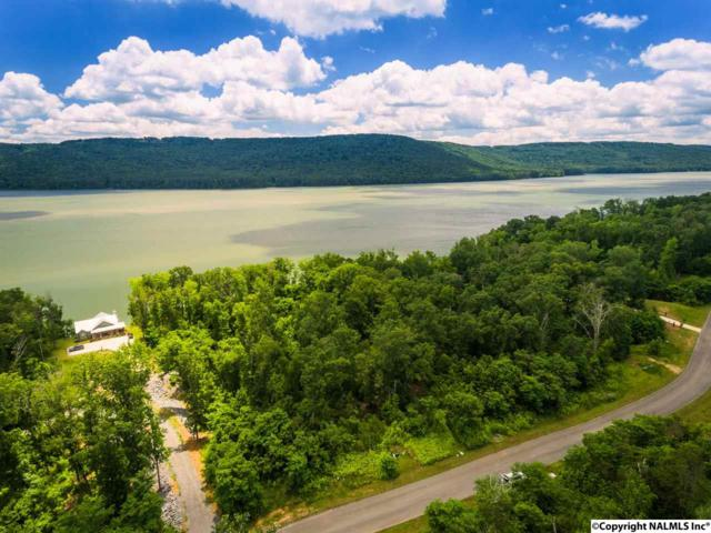 241 Lookout Mountain Drive, Scottsboro, AL 35769 (MLS #1069244) :: Intero Real Estate Services Huntsville