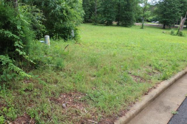 10 Cade Circle, Leesburg, AL 35983 (MLS #1069753) :: Amanda Howard Sotheby's International Realty