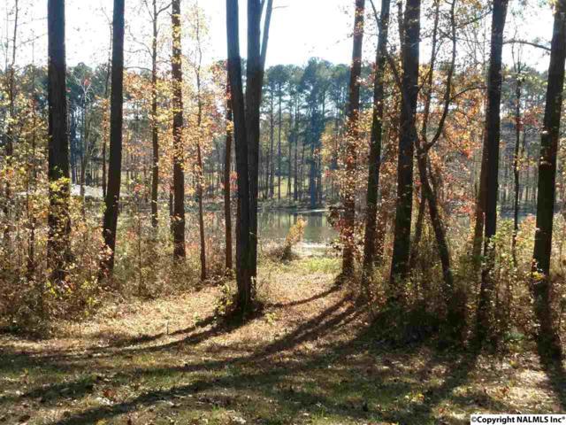 980 Peninsula Drive, Scottsboro, AL 35769 (MLS #1070451) :: Amanda Howard Real Estate™