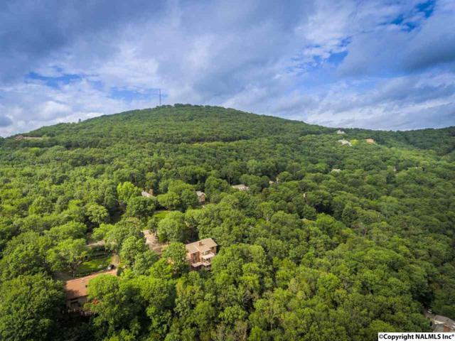 1316 Chandler Road, Huntsville, AL 35801 (MLS #1072061) :: Amanda Howard Real Estate™