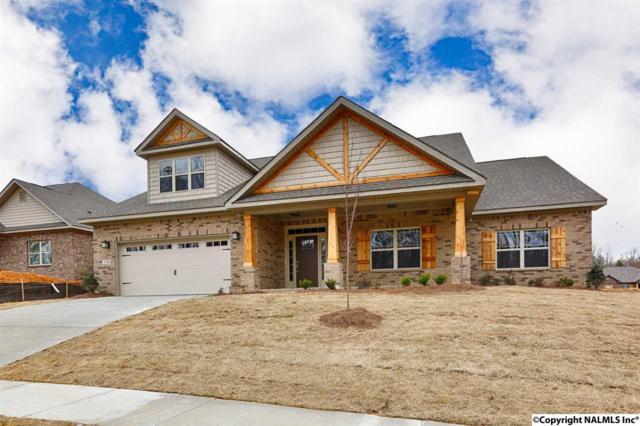 154 Heritage Brook Drive, Madison, AL 35757 (MLS #1075027) :: Capstone Realty