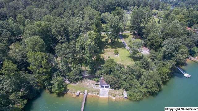 1545 County Road 330, Crane Hill, AL 35053 (MLS #1075447) :: Capstone Realty