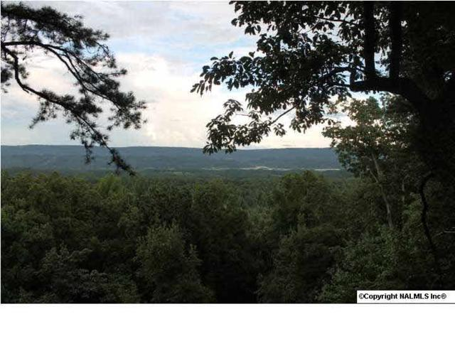 County Road 1010, Fort Payne, AL 35968 (MLS #1076011) :: Legend Realty