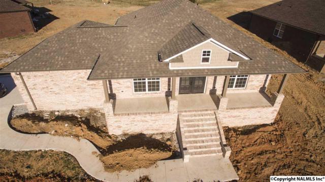 21236 Barley Terrace Drive, Elkmont, AL 35620 (MLS #1077661) :: Amanda Howard Real Estate™