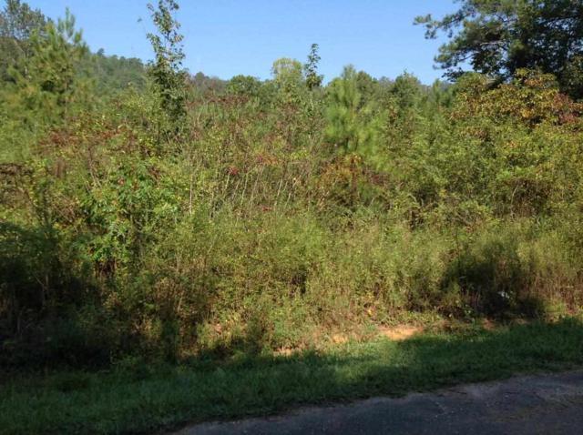 Lt#28 Ewing Gap Road, Leesburg, AL 35983 (MLS #1078600) :: RE/MAX Alliance