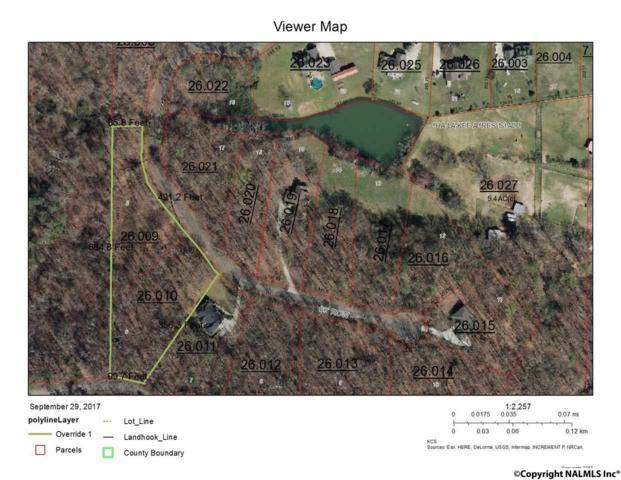 5&6 Tomahawk Circle, Guntersville, AL 35976 (MLS #1079528) :: Amanda Howard Real Estate™