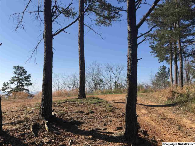Lot 1 County Road 70, Leesburg, AL 35960 (MLS #1080317) :: The Pugh Group RE/MAX Alliance